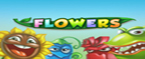 slot machine flowers